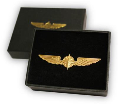 Pilot Wings gold 3,5 cm pin
